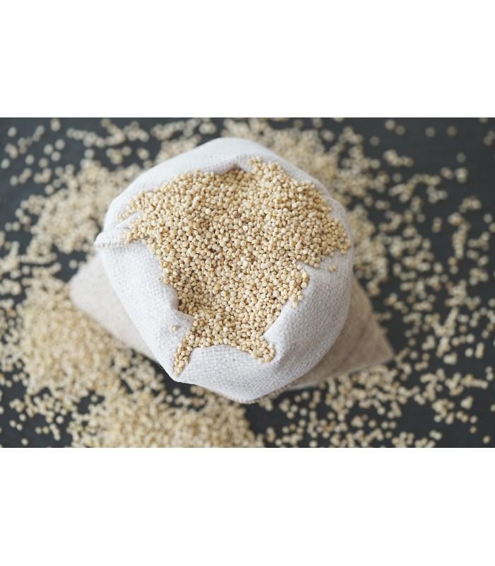 Quinoa 'le caractère'