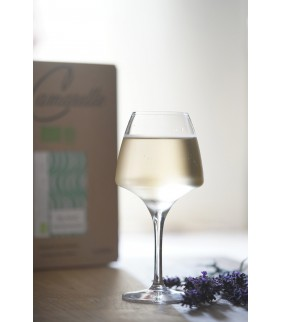 Vin Chateau Beaubois Blanc Bio 5L